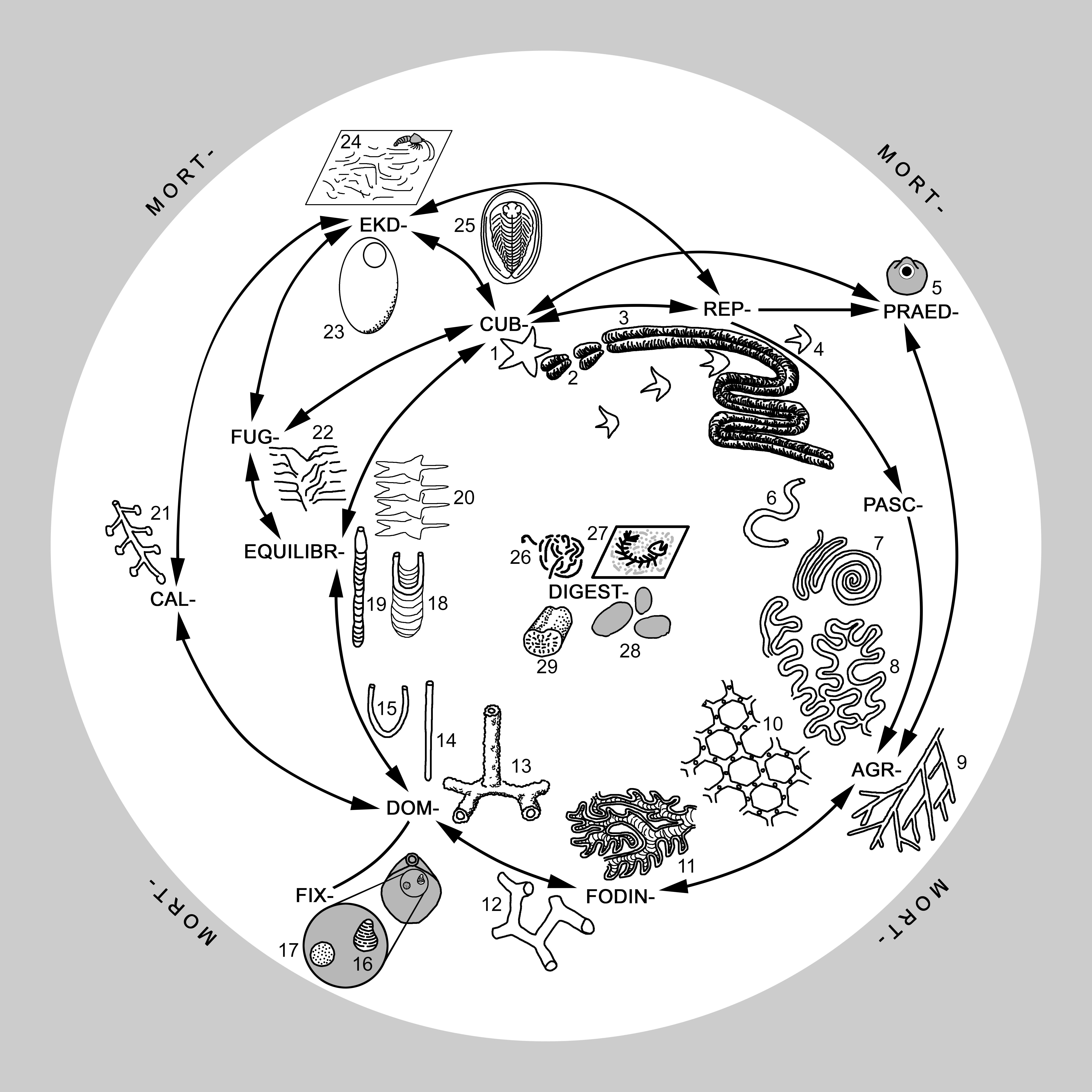 Ethological Classification